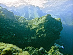 Дайв-тур на Канарские острова «Дайвинг на краю Земли»